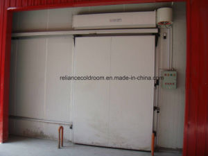 Standard Manual Sliding Door for Cold Room pictures & photos