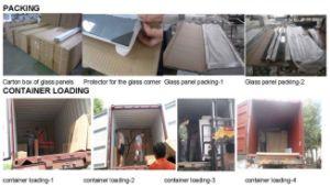 Sanitary Ware Shower Enclosure Temperd Glass Shower Door pictures & photos
