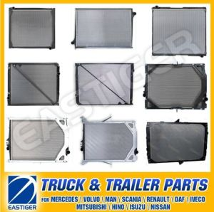 Over 300 Items Auto Parts for Radiator pictures & photos
