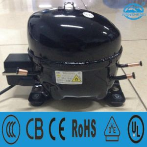 Deep Freeze R600A Compressor (WS103YV) for Commercial Use pictures & photos