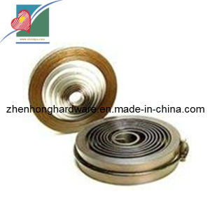 Alloy Clock Spring Constant Coil Spring (ZH-022)