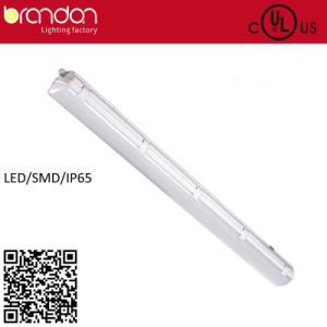 4 Ft IP65 LED SMD Version Light (UL cUL listed)