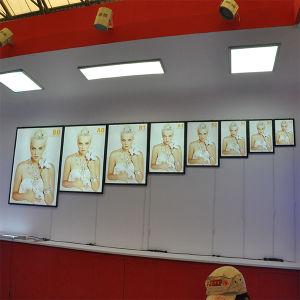 B1, A1, A2, A3, A4, A5 Super Slim Light Box pictures & photos