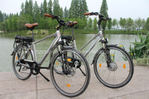Family E-Bikes E-Bicycle Electric Bike Scooter Motorcycle 250W 36V Li-Battery Samsung Sony Brand pictures & photos