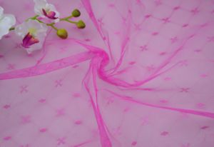Jacquard Polyester Knitted Mosquito Net Fabric pictures & photos