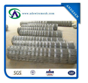 Hot Dipped Galvanized Farm Fencing Field Fence, Deer Fence, Cattle Fence pictures & photos