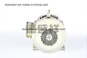 Ie3 Efficiency 22kw Three Phase Asynchronous Electric Motor AC Motor