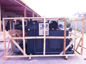 Solid Rubbish Incinerator with Ce Recognition pictures & photos