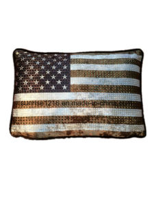 Decorative Cushion Sr-C170213-1 High Fashion Metaled Velvet Cushion pictures & photos