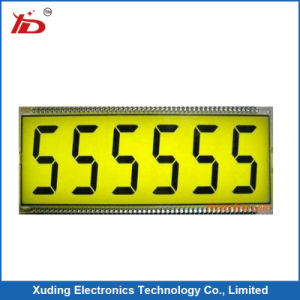 Monochrome Tn LCD Screen Display Segment LCD Panel LCD pictures & photos