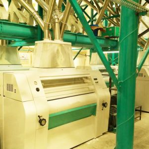 Grain Mills for Sale, 2018 New Design Wheat Mills Machine Price pictures & photos
