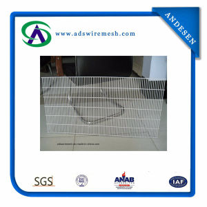 358 High Security PVC Coated Welded Wire Mesh Fence pictures & photos