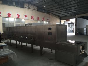 Kwsg Tunnel Type Microwave Sterilization Dryer/ Food Vegetable Fruit Cereal Rice Grain Seed Sterilizing Drying Equipment pictures & photos