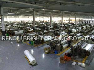 160g Best Quality External Wall Insulation Fiberglass Mesh pictures & photos