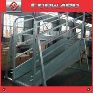 Hot Dipped Galvanised Adjustable Cattle Loading Ramp pictures & photos