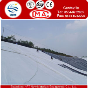 200G/M2 Needle Punched Nonwoven Geotextile Protect Geotextle pictures & photos