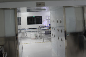 Materials Airshower for Entered Purification Pretreatment Zone pictures & photos
