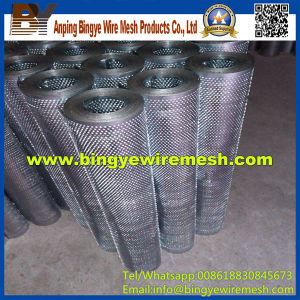 Perforated Mesh Metal Direct Factory (ISO) pictures & photos