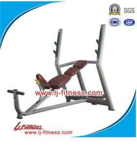 Olympic Incline Bench, Training Machine (LJ-5628)