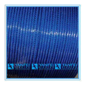 Blue PVC Coated Steel Wire Rope for Lifting pictures & photos