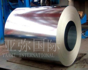 Gi/Hot-Dipped Galvanized Steel Coil