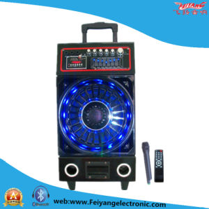 Feiyang Temeisheng 10′′inch Professional Wooden Audio with Bluetooth F6210s pictures & photos