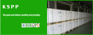 55GSM Offset Paper, White Bond Paper, Woodfree Offset Printing Paper