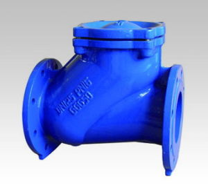 DIN3202 F6 Double Flange Ball Check Valve pictures & photos