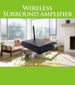 2.4GHz Hifi Stereo Digital Wireless Amplifier for 5.1 Home Theatre pictures & photos