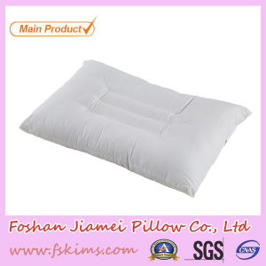 Cassia Seed Student Kapok Pillow