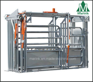 Allrounder Crush / Cattle Crush HDP or Powder Coated on Sale pictures & photos