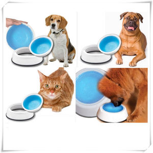 Customized Colorful Pet Chilled Feeder (VD15005) pictures & photos