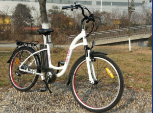 En15194 Green Power Electric Bike with Pedals for Sale pictures & photos