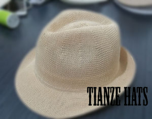 Fashion Hats Trilby Hat Bodies pictures & photos