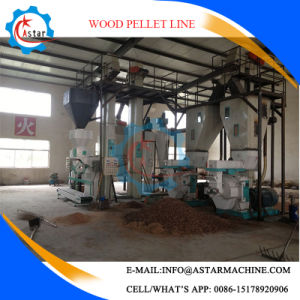 Turn-Key Project Complete Wood Pellet Making Line pictures & photos