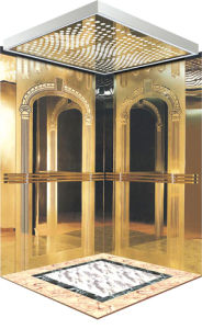 Fjzy-High Quality and Safety Passenger Elevator Fjk-1603 pictures & photos