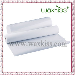 Higenic Product PP Nonwoven Couch Roll with Proferated Line