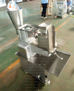 Stainless Steel Automatic Samosa Making Wonton Ravoli Dumpling Maker Machine pictures & photos