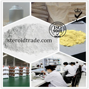 99% High Quality 112529-15-4 Pioglitazone Hydrochloride Pioglitazone HCl pictures & photos