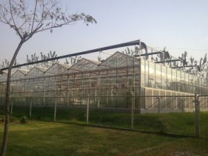 Modern Design Glass Greenhouse for Picking Garden with Adjustment System pictures & photos