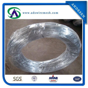 Professional Produce Electro/Hot-Dipped Galvanzied Iron Wire pictures & photos