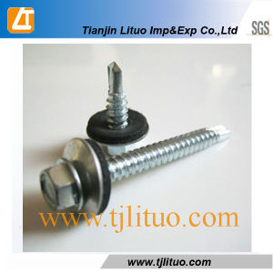 DIN7504k Hex Head Self Drilling Screws with EPDM Washer pictures & photos