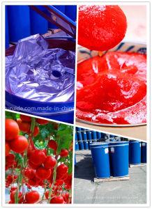 2014 Crop 240 Kg 28%-30% 36%-38% Brix Drumed Tomato Paste