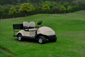 Dongfeng Motor Best Multi-Function Electric Go Cart Golf Cart with Cargo Box pictures & photos