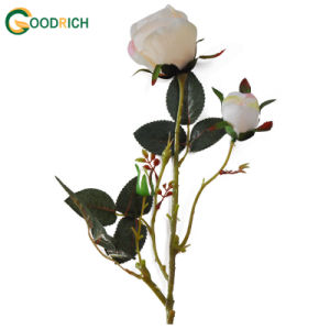 New Design Artificial Rose Flower pictures & photos