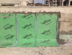 Superior Green Self-Adhesive Waterproof Membrane pictures & photos