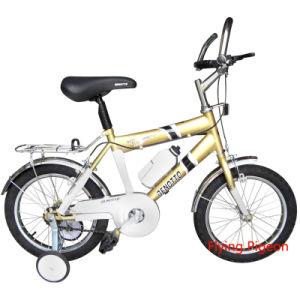 BMX Bicycle Kid′s Mini Mountain Bike (FP-KDB049) pictures & photos