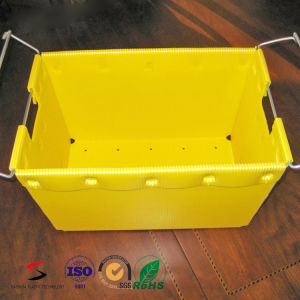 PP Polypropylene Fruit and Vegetable Packing Box with Printing Folding Box pictures & photos