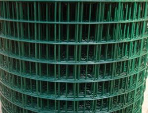 Green PVC Coated Welded Wire Mesh pictures & photos