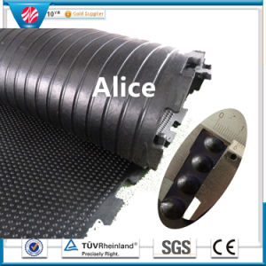 Outdoor Rubber Tile/Animal Rubber Mat/Rubber Stable Mat/Cow Rubber Mat pictures & photos
